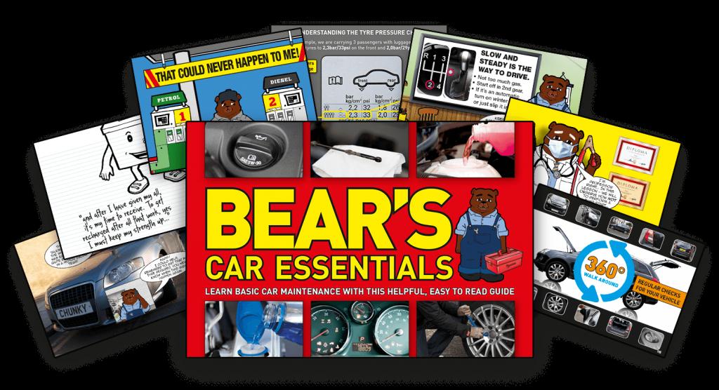 Bears Car Essentials